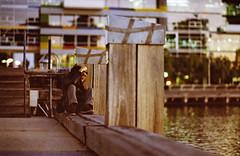 Shooting a sunset (AdrianMalec) Tags: film 35mm iso800 nikon kodak f14 85mm melbourne f80 portra 800 nightwalk samyang