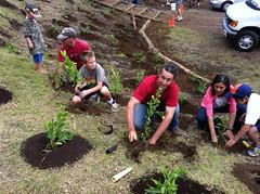 Plant a Wish: Hawaii - Tour Finale