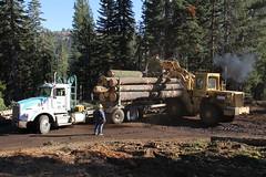 IMG_9763 (RyanP77) Tags: tree pine forest truck john saw log lift harvest logging fork sierra chain deere peterbilt skidder