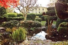 Calderstones Park, Liverpool (Julie Green, Liverpool) Tags: park en house liverpool garden japanese mansion calderstones