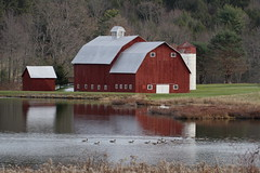 Country Living (Diane Marshman) Tags: county door wood old autumn trees windows roof red white mountain canada building fall nature water grass metal pine