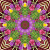 [2013-46] Inspired by Balinese Temple Offerings (dreamscaper) Tags: flowers bali abstract indonesia kaleidoscope multiplecolors