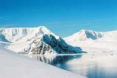 Nikko Harbour (16) (Eugene Regis) Tags: port point island bay penguins gentoo paradise harbour cove deception antarctica seals cape horn nikko channel albatross cierra lemaire lockroy jubila