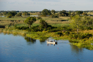 Botswana Okavango Delta Photo Safari 58
