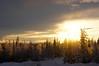 Shine (Michelle Myhill) Tags: winter sky sun nature alaska landscape scenery