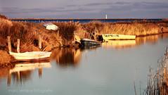 tarda a la badia (Seracat) Tags: sunset boat barca delta catalonia catalunya ebro ebre tarda catalogne deltadelebre crepuscle capvespre terresdelebre badiadelsalfacs alfacs lesolles seracat goler logoler marcserarols