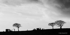 Farming in Winter (Rafe Abrook Photography) Tags: trees winter tractor tree silhouette landscape farmers farming isleofwight crops agriculture picking iow godshill