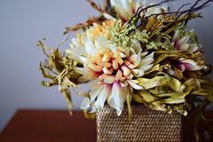 Flowers in a Basket - 119 (katielsalter) Tags: flower basket photoaday bouquet nikond3200 365project katielsalter