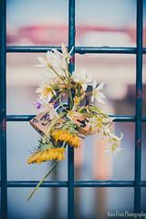 Kyle & Jenny (novavistaphotography) Tags: flowers flower georgia 50mm naturallight lovelock nikond3200 romega romegeorgia lovelocks lovepadlock oostanaulariverbridge