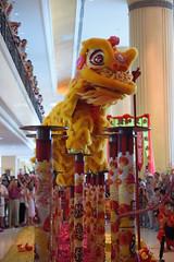 Img441788nx2_conv (veryamateurish) Tags: singapore chinesenewyear liondance gongxifacai shangrilahotel yearofthegoat keungheifatchoi