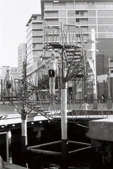 Diver (Jim Davies) Tags: newzealand slr film monochrome analog swimming 35mm photography 50mm fuji harbour roadtrip olympus om10 wellington northisland neopan diver analogue aotearoa 400asa veebotique