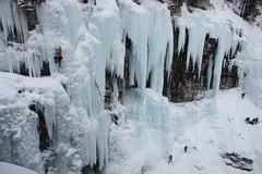YBA-6772 (Differentialdx) Tags: alberta banff banffnationalpark upperfalls johnstoncanyon