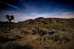 Let Me Play Amongst The Stars (dmj.dietrich) Tags: california sunset sky moon mountains clouds stars landscape nationalpark rocks outdoor joshuatree moonrise bluehour magichour goldenhour