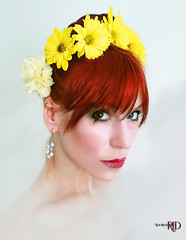 Yellow (Spoken in Red) Tags: carnation redhair yellowflowers brightyellow fashionportrait womanportrait redbangs springportrait daisycrown spokeninred