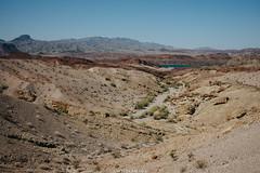 5R6K2584 (ATeshima) Tags: arizona nature havasu