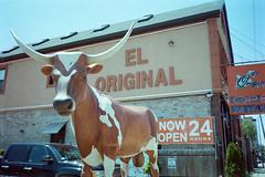 El Toro Original (pabs35) Tags: food chicago film gold restaurant minolta kodak bull mexican 200 pointandshoot expiredfilm minoltaafbigfinder believeinfilm