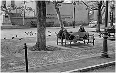 Plaza Salvador Brau (Samy Collazo) Tags: leica bw san juan kodak oldsanjuan bn sanjuan viejo viejosanjuan lightroom kodaktrix400 kodakd76 lightroom3 leicalllf1953