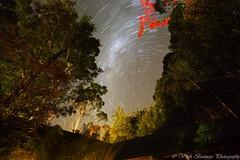 Cradle Mountain SCP Star Trail [Tasmania] - 27 April 2016 (myshutterworld) Tags: nightphotography mountain nightscape south australia pole astrophotography tasmania nightsky wilderness celestial cradle scp startrail lemonthyme milkywaygalaxy