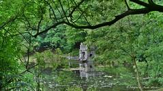 Park van 'Het Oude Loo' (henkmulder887) Tags: panorama holland nature water landscape groen beek natur thenetherlands natuur natura explore veluwe apeldoorn landschap vijver rhododendrons waterval theekoepel paleispark hetoudeloo beeldenvijver