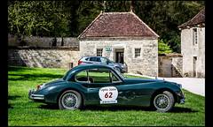 Jaguar XK 140 (1955) (Laurent DUCHENE) Tags: jaguar 140 xk 2016 tourauto abbayedefontenay peterauto