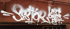 sestor (el guerpo) Tags: traingraffiti sestor bayareagraffiti santacruzgraffiti