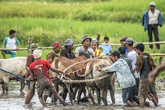 33_20160315-171420-_DSC5518 (trueforever) Tags: indonesia ibis bukittinggi padang novotel pagaruyung minangkabau jamgadang lembahharau westsumatera batusangkar tanahdatar ngaraisianok padangpanjang pacujawi padangpariaman