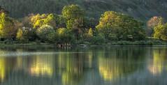 Stragshand Bay (gh04) Tags: lakedistrict cumbria derwentwater