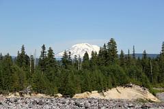 Mt Adams (M.Chopra) Tags: mountain snow portland mthood portlandia portlandor mountsthelens mtadams mtsthelens stumptown mountadams