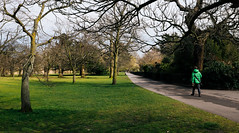 Different greens (lorenzoviolone) Tags: park trees england london landscape shadows unitedkingdom greenwich streetphotography stranger finepix fujifilm streetphoto greenwichpark fujiastia100f fav10 mirrorless vsco vscofilm streetphotocolor fujix100s x100s fujifilmx100s travel:uk=londonapr16