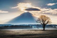 Let there be Light (@Mahalarp) Tags: fuji fujinomiya fujisan japan cloud dawn fog fumotopara light morning mount mountain shizuoka sunrise fujifilm xt1 fujinomiyashi shizuokaken jp