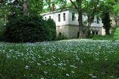 Vidin - Danube Garden (lyura183) Tags: garden bulgaria vidin
