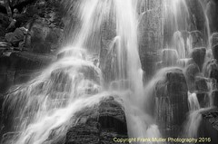 T4992x3280-00370 (frankfoto) Tags: fingerlakes gorge gorges coyglen cornellplantations blackandwhite bw lightandshadow upstate upstatenewyork