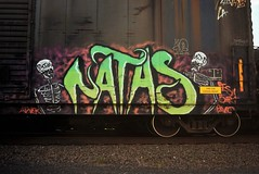 NATAS (TheGraffitiHunters) Tags: street pink orange white black green art yellow train skull graffiti colorful paint tracks spray boxcar skeletons freight natas benched benching