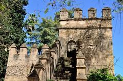 2016 04 25 226 Alcazar, Seville (Mark Baker.) Tags: 2016 andalucia april baker eu europe mark sevilla seville spain alczar castle city day european fortress outdoor palace photo photograph picsmark spring union urban