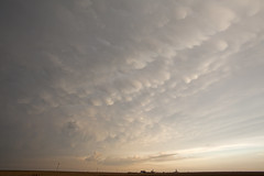 The good days have sunset mammatus (ianseanlivingston) Tags: kansas mammatus thunderstorm stormchasing supercell anvilcloud weather