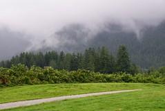 Capilano River Regional Park (careth@2012) Tags: trees mist misty fog clouds forest nikon scenery view britishcolumbia foggy scenic scene wilderness 55300mm nikond3300 d3300