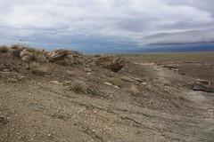 Petrified Forest National Park - Arizona (Brynn Thorssen) Tags: park red arizona rain fossil nationalpark ancient rust flood cloudy desolate petrifiedforestnationalpark flooded petrifiedforest petrified petrifiedwood fossilized rainbowforest