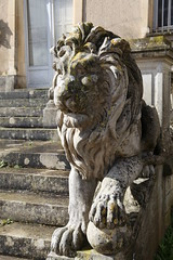 Lion de pierre-Entre Est (volcan642012) Tags: weddings birthdays stonelion loirevalley 16thcentury seminars