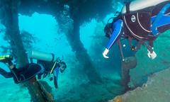 Diving the Liberty Shipwreck (Corey Hamilton) Tags: travel bali tulamben wreckdive libertyshipwreck