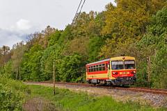 """Carriolo"" nel bosco (Antonio Martinetti) Tags: train hungary treno balaton tab mav siofok vlak vonat kaposvar vasut"