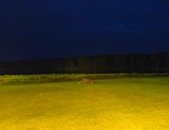 """Getting Ready For A Campfire By The Lake""; Canadensis, Pennsylvania (hogophotoNY) Tags: longexposure usa lake night digital us pond unitedstates pennsylvania pa eastcoast pausa easternpennsylvania hogo hogophoto hogophotony"