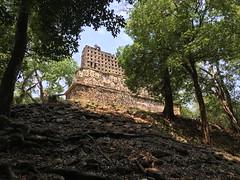 IMG_1991 (tomboy501) Tags: mexico maya guatemala mayanruins chiapas yaxchilan usumacintariver