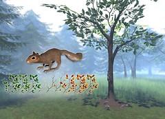 JIAN Squirrel Oak Tree (FaMESHed July) ([JIAN]) Tags: pet home animal fauna garden outdoors squirrel mesh decoration secondlife animated decor jian