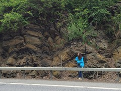 IMG_1531 (ArgyleMJH) Tags: photostream geology taconic ordovician cambrian deepkillformation argyle washingtoncounty newyork overthrust thrustfaulting mudstone loganscycle logansline giddingsbrookslice allochthon faulting paleozoic fractures ucdavis