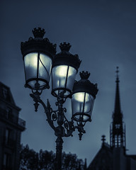 Paris Street Lamps #4 (marianboulogne) Tags: city nightphotography light urban blackandwhite bw paris france lamp monochrome night lights mono europa europe ledefrance noiretblanc streetlamps lamppost nuit pary francja sony50mmf14 sonya99