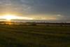 Landscape Lithuania