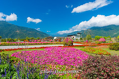 Harry_09985,,,,,,,,,,,,,,,,,, (HarryTaiwan) Tags: taiwan    d800                  harryhuang     hgf78354ms35hinetnet