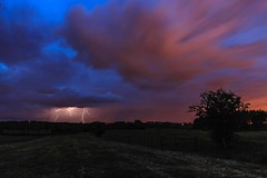 Lightning in the countryside at blue hour (lathuy) Tags: trees sky clouds countryside long exposure belgium belgique belgie exposition ciel arbres le lightning luxembourg nuages campagne orage wallonie arel longue champps arlon wallonia éclairs