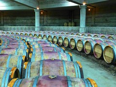 9667711473 1ef82254d2 m 2013 Bordeaux Images Photographs Chateau Owners Wine Food Life