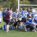 """<b>Luther Men Rugby vs Alumni</b><br/> Luther Rugby vs Alumni game at the homecoming 2013 - Photo taken on Saturday, October 5 by Maria da Silva<a href=""""http://farm8.static.flickr.com/7343/10104281746_6957babdac_o.jpg"""" title=""""High res"""">∝</a>"""
